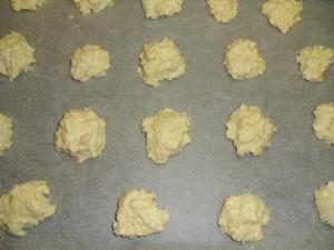 biscotti in forno